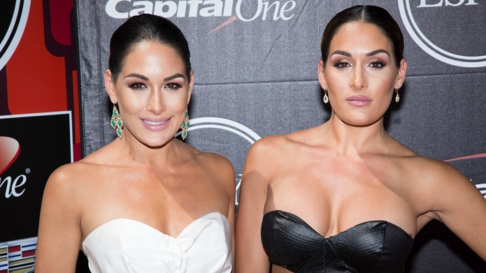 Brie Bella's wrestling career will be