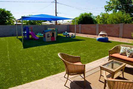 New options for your lawn: Alternatives