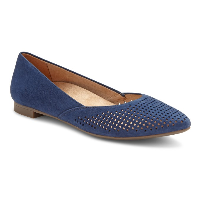 Blue flat with a pointy toe