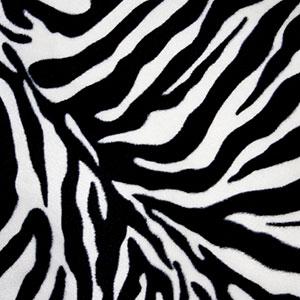 Zebra print | Sheknows.com
