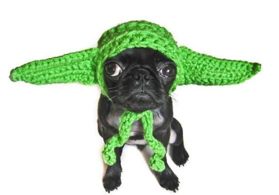 14 Geeky gift ideas for pets