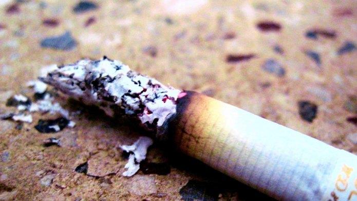 Smoking around your pets may be