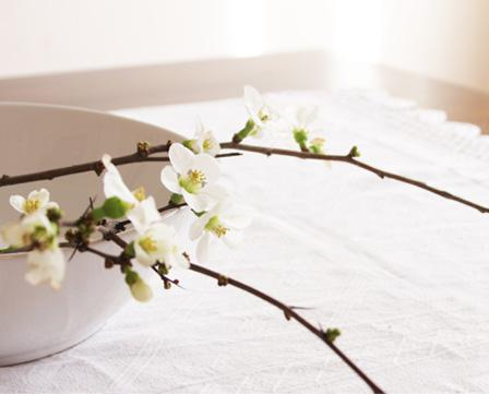 Rustic centerpieces for your dining table