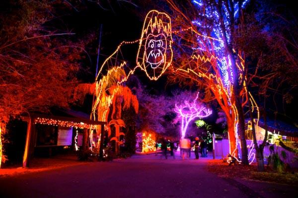 Zoo lights at Phoenix Zoo