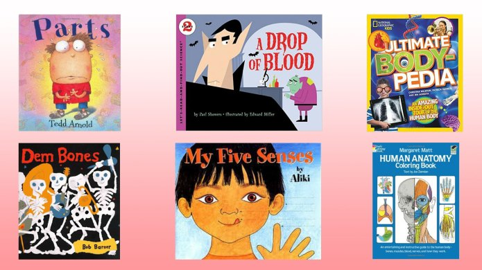 13 books for kids about blood,