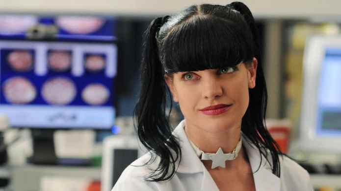 Pauley Perrette Is 'Still Grieving' Her