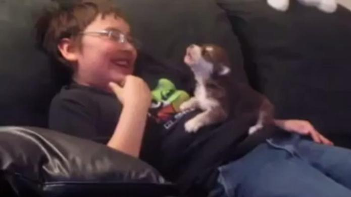 Boy teaches puppy how to howl