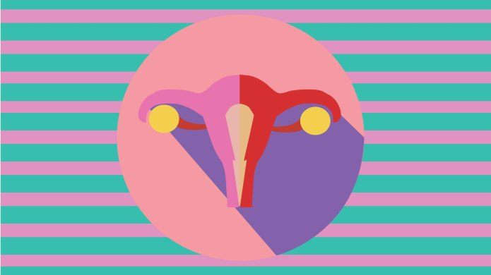 Colorful uterus on striped background