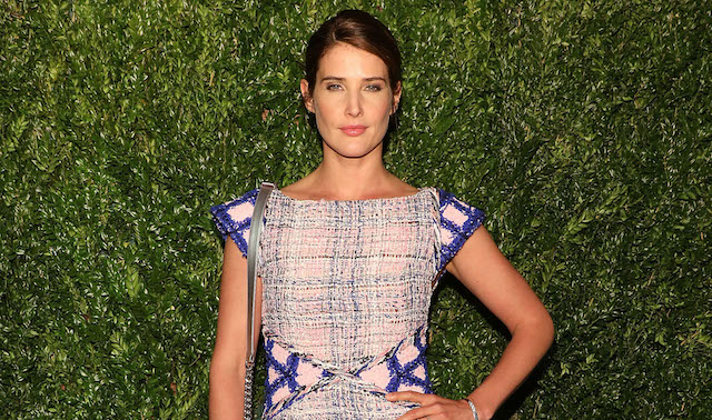 Cobie Smulders attends the 13th Annual Tribeca Film Festival CHANEL Dinner at Balthazar on April 23, 2018, in New York City
