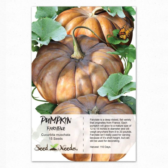 Pumpkin Seeds