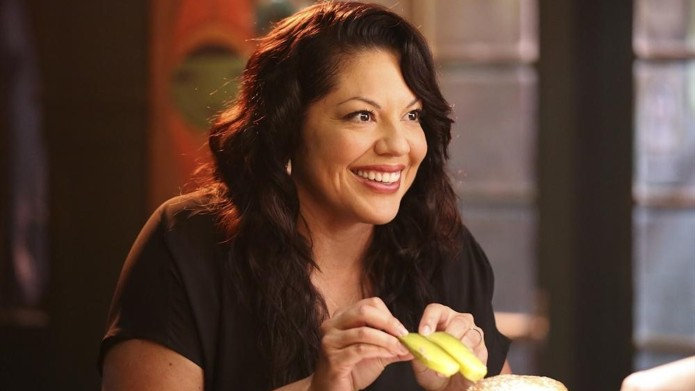 Sara Ramirez as Callie Torres on