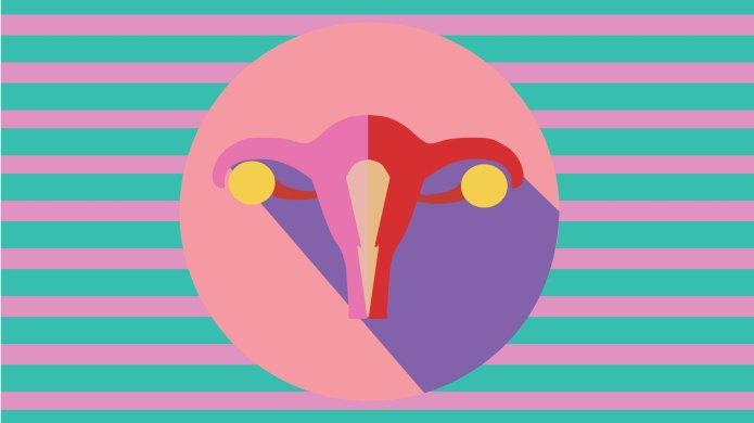 graphic of uterus, ovaries and vagina