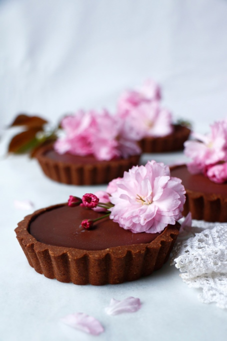 Vegan Reishi Chocolate Tarts