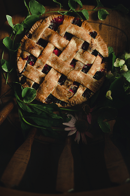 Tart Blueberry Plum Pie