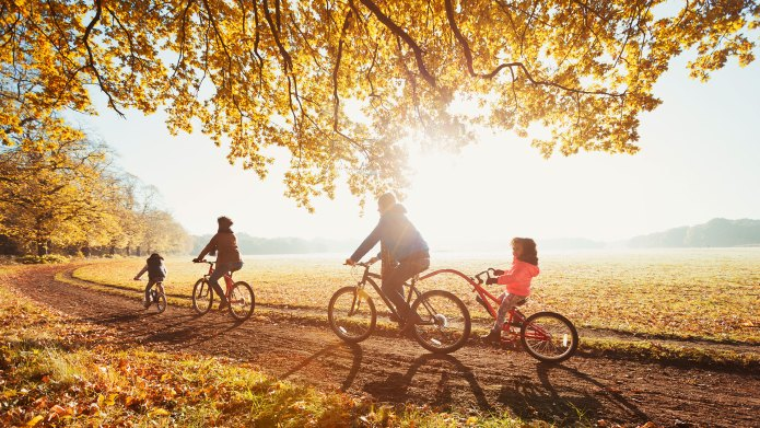 Family riding bicycles on a sunny