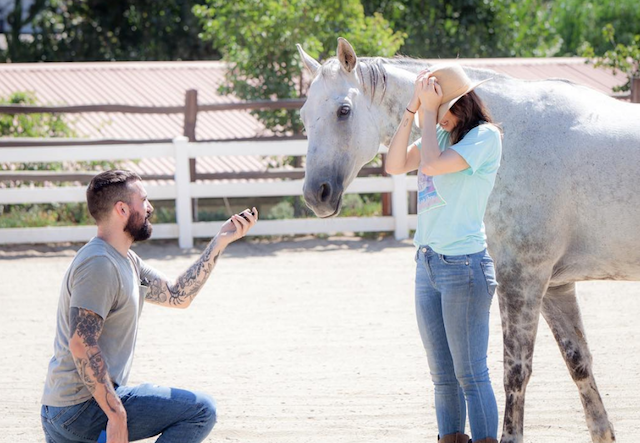 Engagement photo of Whitney Cummings and Miles Skinner with a horse