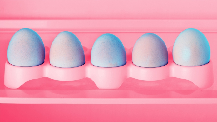 Chicken eggs in a refrigerator tray