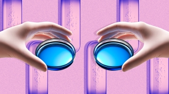Two hands holding petri dishes