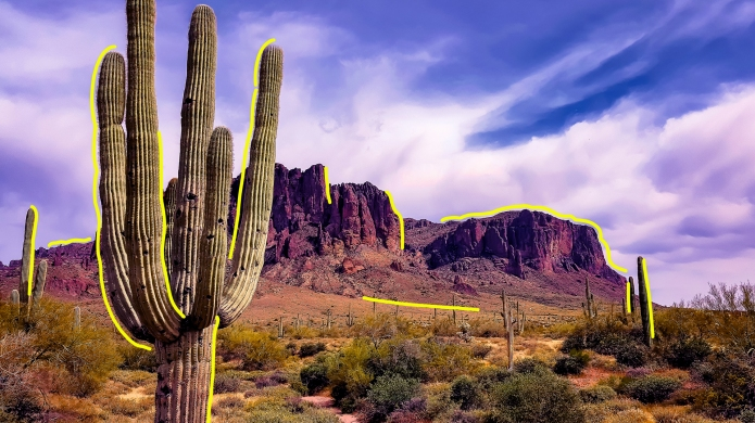 Saguaro cactus and butte outside Phoenix,
