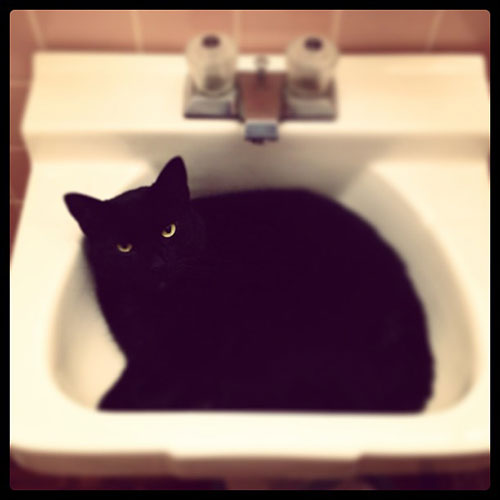 Sink slumber