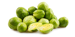 Isolated brussle sprouts
