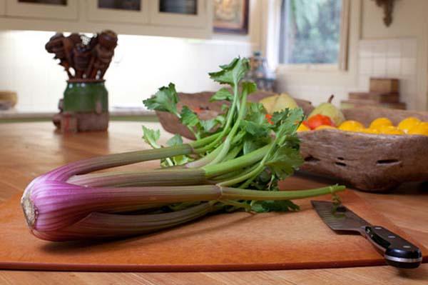 Duda Farm Fresh Foods introduces Celery Sensations red celery