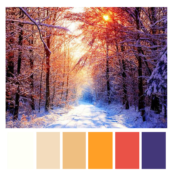colorful forest pallet