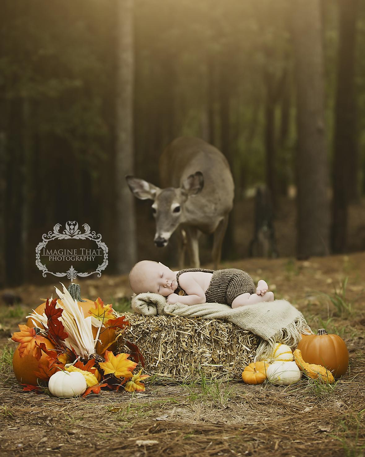maggie-the-deer-photobombs-baby