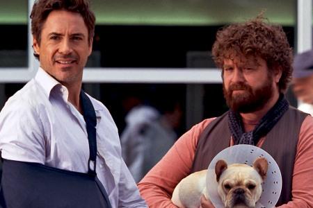 Due Date stars Robert Downey Jr and Zach Galifianakis