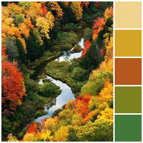 Fall Color schemes Bright side of fall