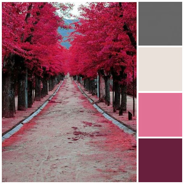 SheKnows fall color scheme pink and purple