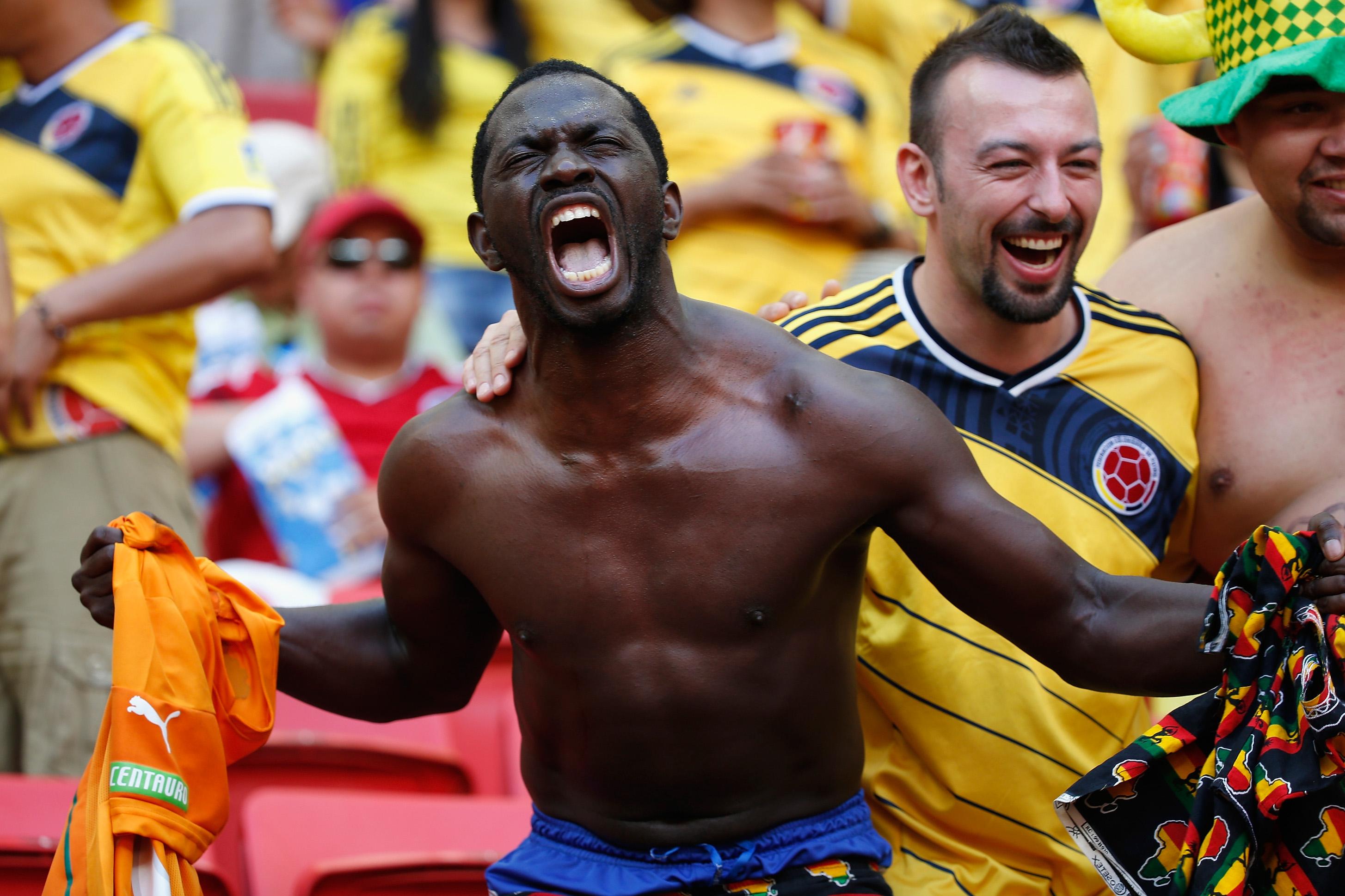 World Cup 2014 fan