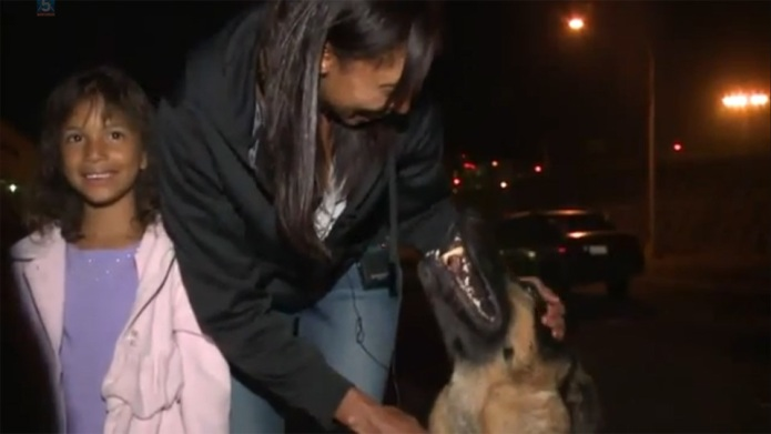 German Shepherd reunites with family after