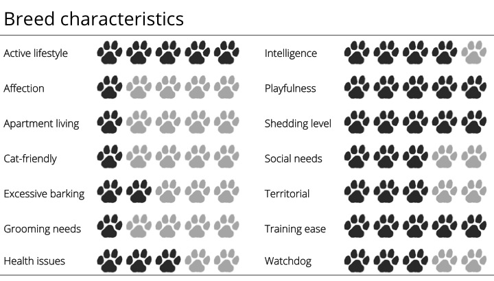 german shorthaired pointer breed characteristics