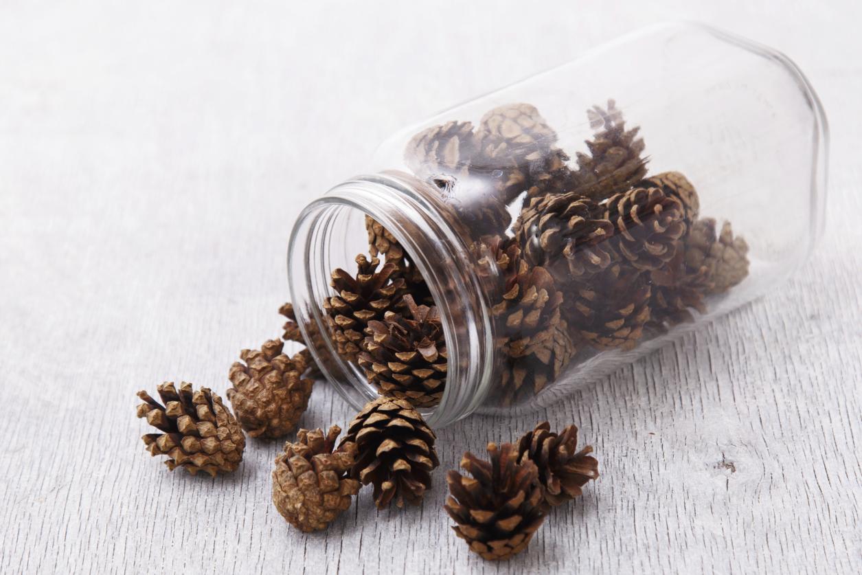 mason jar pine cones