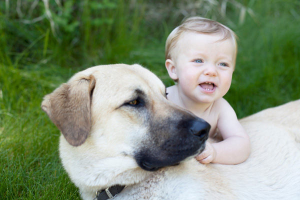 Infant with Dog outdoors