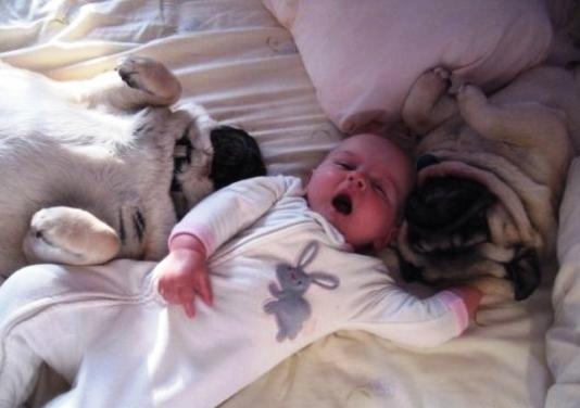 Agghhhh...I need a nap