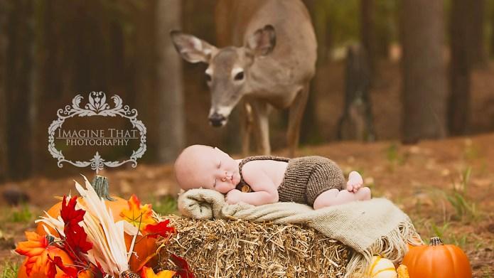 Deer photobombs baby's pictures & it's