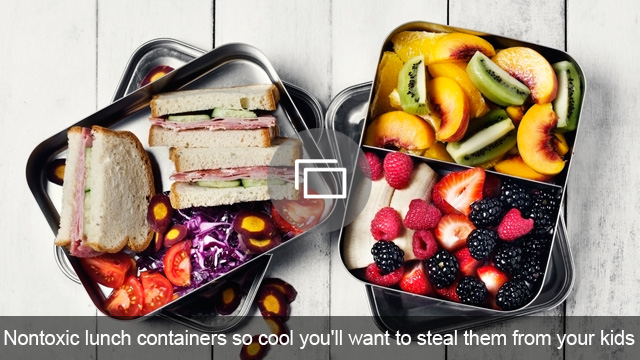 Nontoxic lunch containers so cool you'll want to steal them from your kids