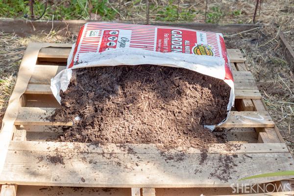 Pour potting soil on pallet