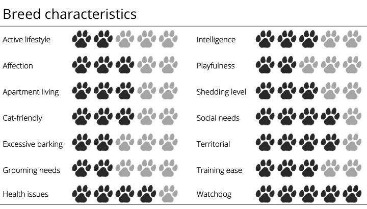 great dane breed characteristics