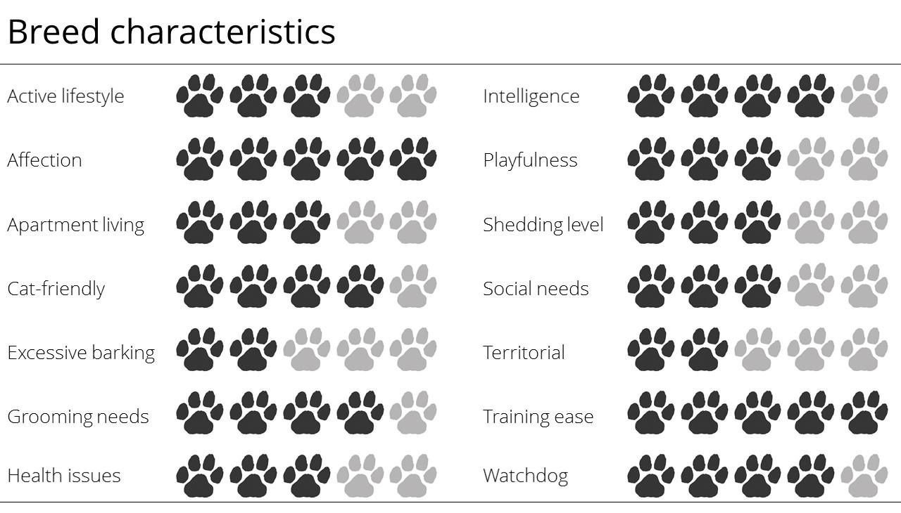 breed characteristics