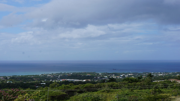 View of Nevis from Bontaical Gardens