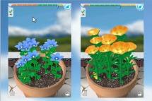 Virtual Flower Garden