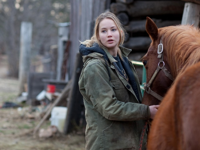 Non-Holiday Winter Movies to Watch Right Now: 'Winter's Bone'