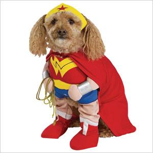 Wonder woman pup