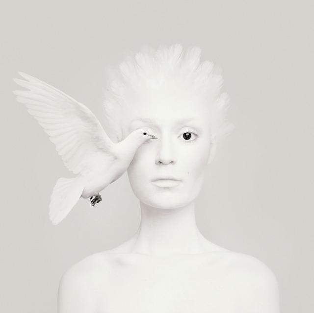 Animeyed - Dove