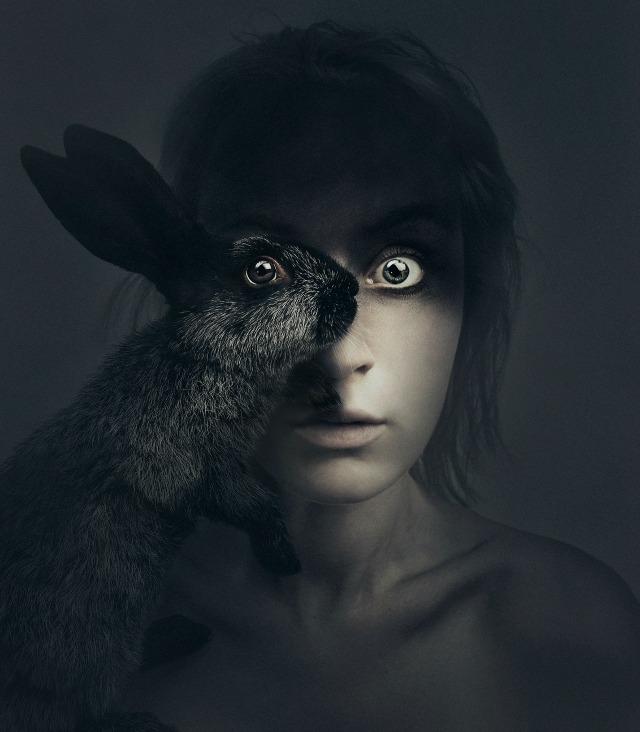 Animeyed - Rabbit