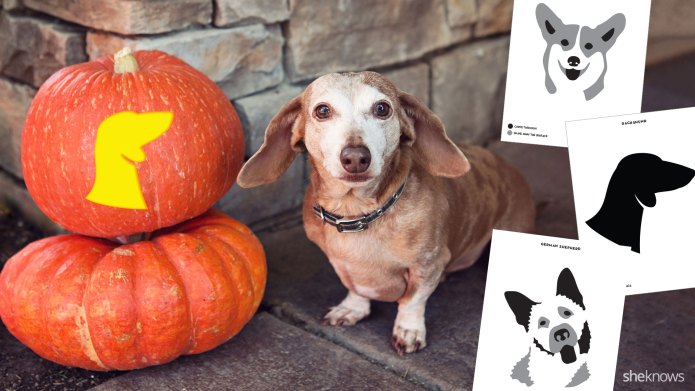 17 Printable dog breed pumpkin carving