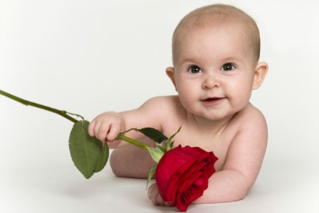 Baby with a rose - The Bachelor